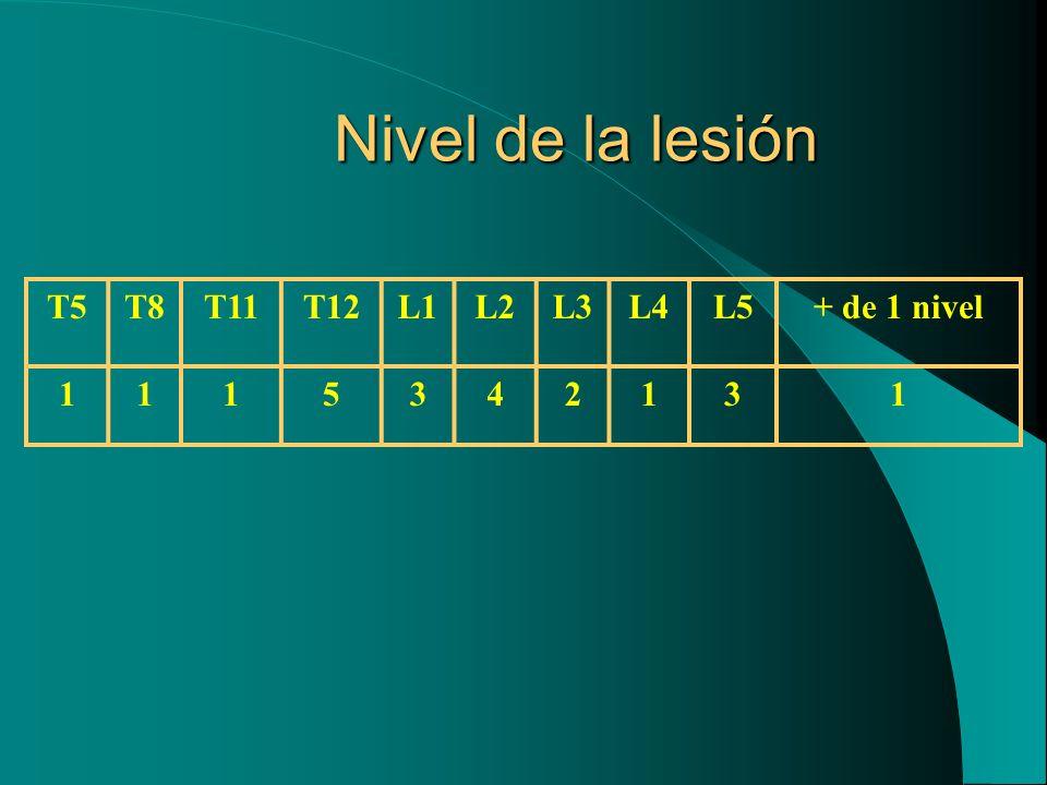 Nivel de la lesión T5 T8 T11 T12 L1 L2 L3 L4 L5 + de 1 nivel 1 5 3 4 2