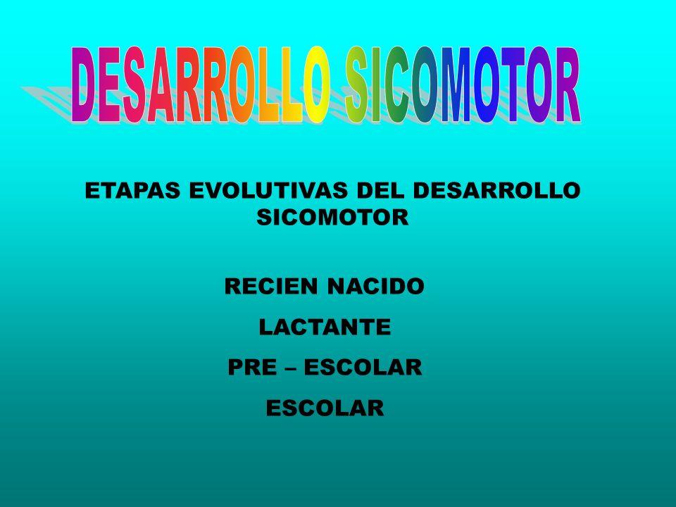 ETAPAS EVOLUTIVAS DEL DESARROLLO SICOMOTOR