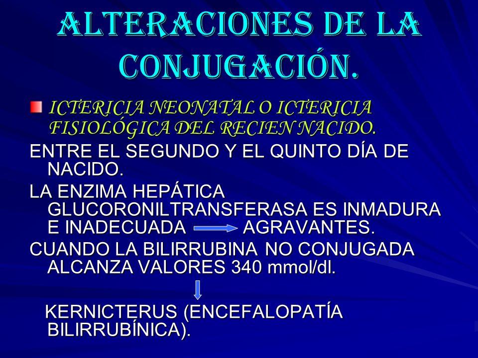 ALTERACIONES DE LA CONJUGACIÓN.