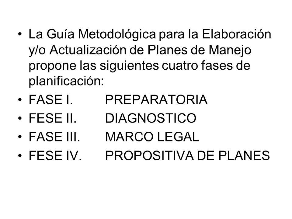 La Guía Metodológica para la Elaboración y/o Actualización de Planes de Manejo propone las siguientes cuatro fases de planificación: