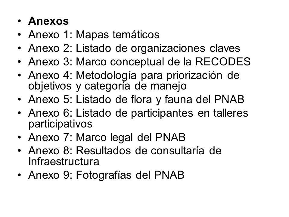 Anexos Anexo 1: Mapas temáticos. Anexo 2: Listado de organizaciones claves. Anexo 3: Marco conceptual de la RECODES.