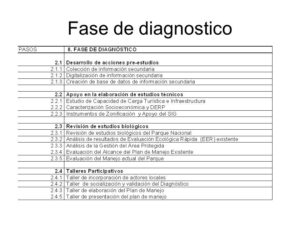 Fase de diagnostico