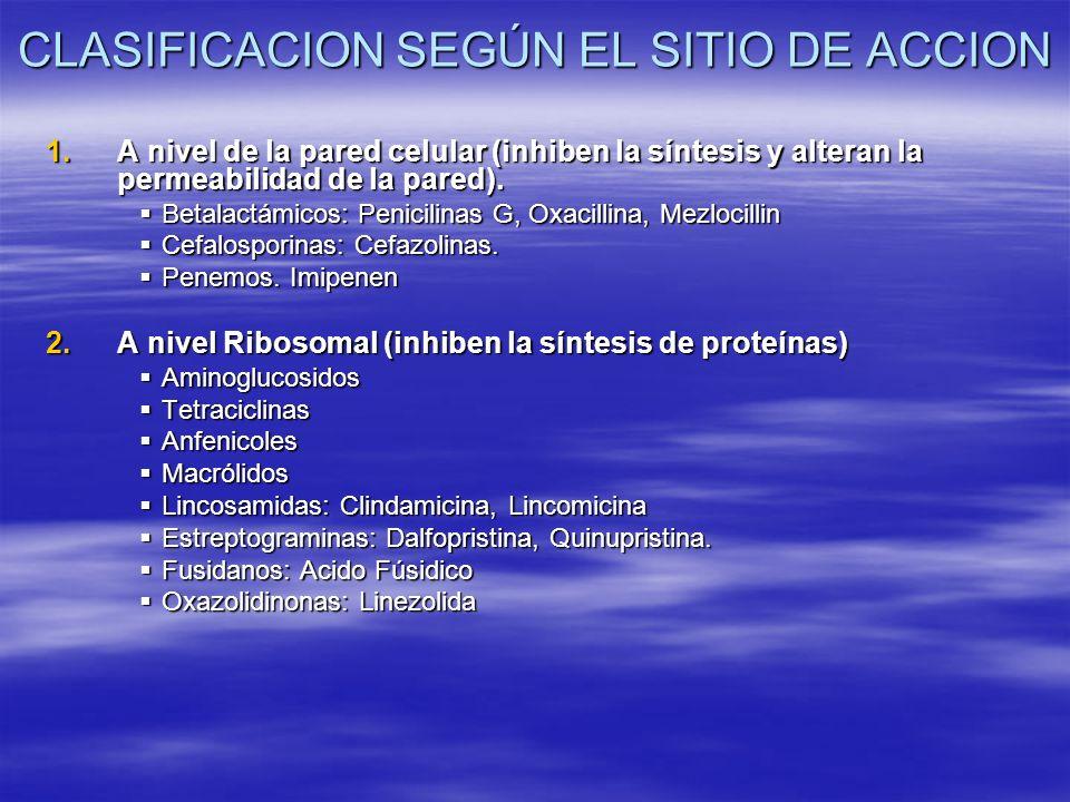 CLASIFICACION SEGÚN EL SITIO DE ACCION