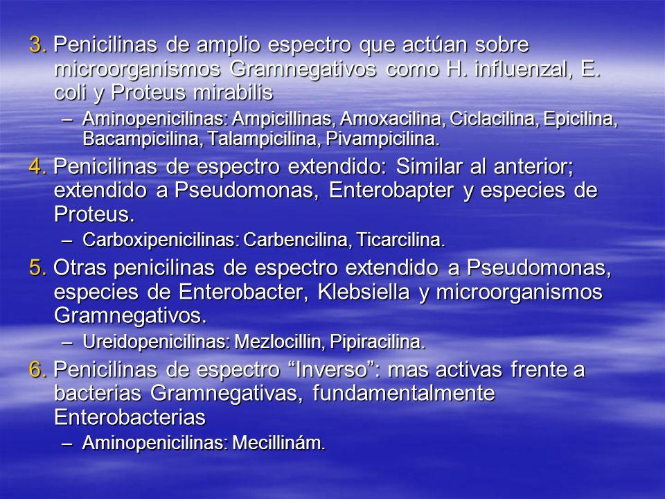 3. Penicilinas de amplio espectro que actúan sobre microorganismos Gramnegativos como H. influenzal, E. coli y Proteus mirabilis