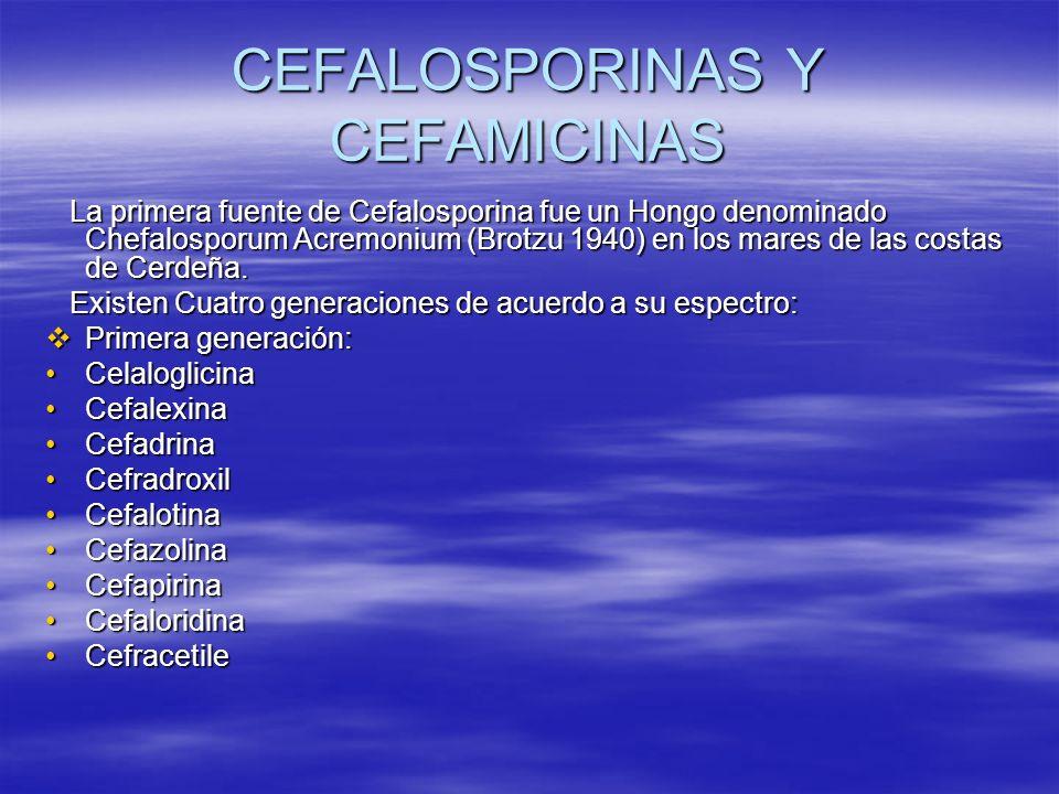 CEFALOSPORINAS Y CEFAMICINAS