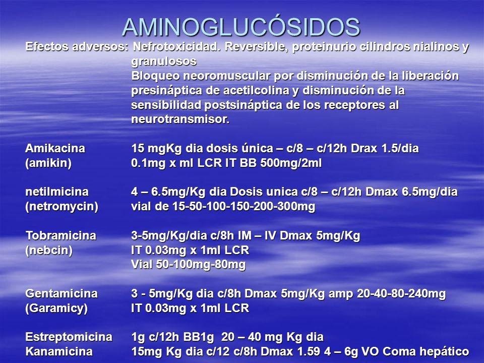AMINOGLUCÓSIDOS Efectos adversos: Nefrotoxicidad. Reversible, proteinurio cilindros nialinos y granulosos.