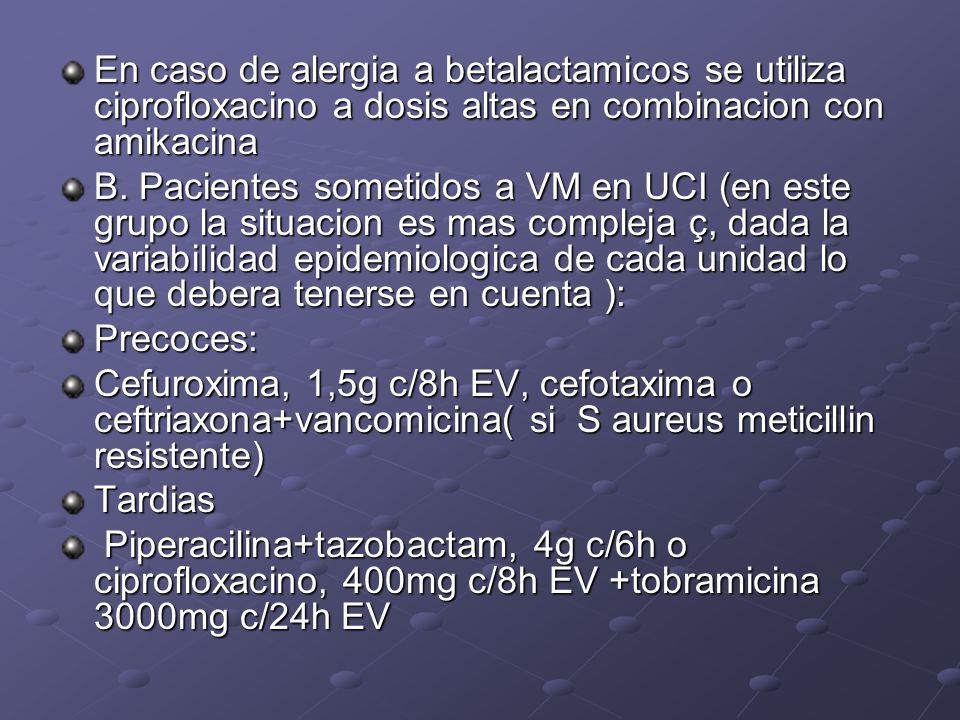 En caso de alergia a betalactamicos se utiliza ciprofloxacino a dosis altas en combinacion con amikacina