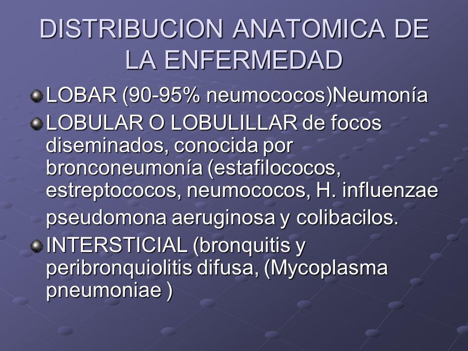 DISTRIBUCION ANATOMICA DE LA ENFERMEDAD