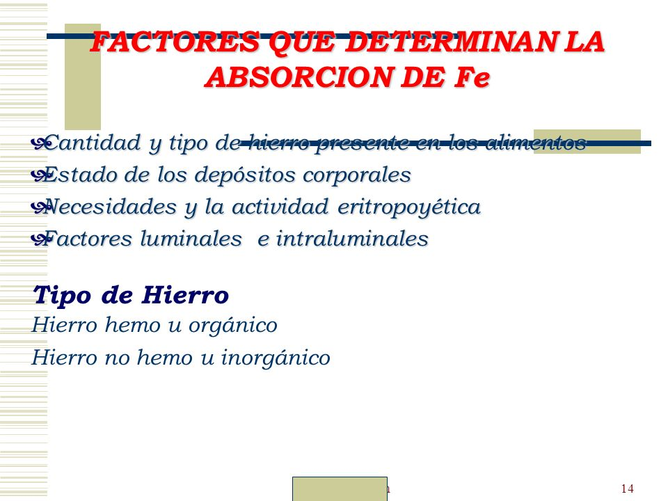 FACTORES QUE DETERMINAN LA ABSORCION DE Fe