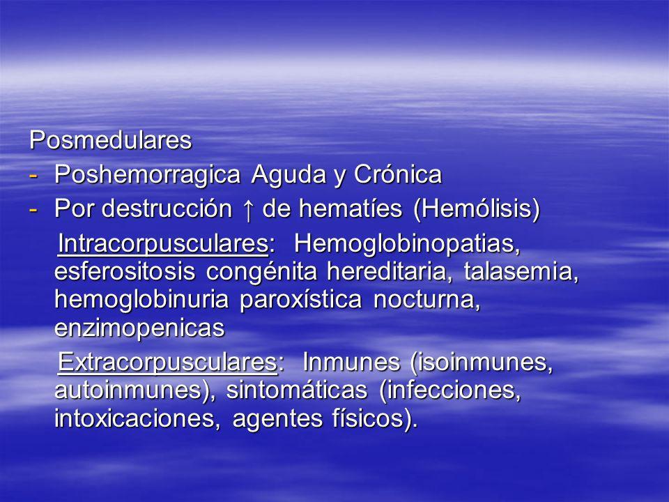 PosmedularesPoshemorragica Aguda y Crónica. Por destrucción ↑ de hematíes (Hemólisis)