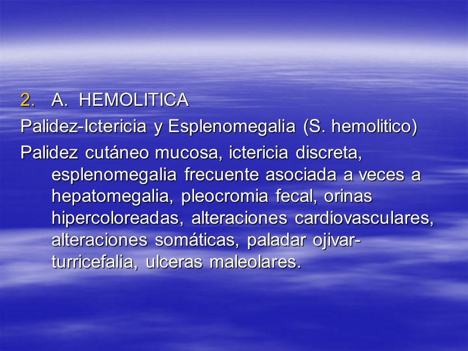 A. HEMOLITICA Palidez-Ictericia y Esplenomegalia (S. hemolitico)