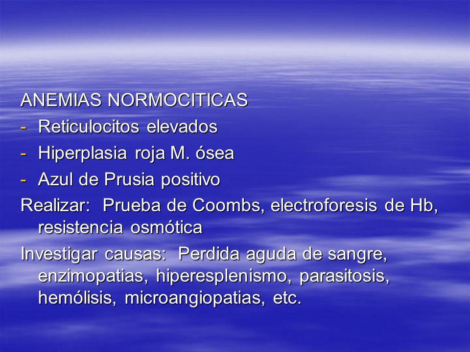 ANEMIAS NORMOCITICAS Reticulocitos elevados. Hiperplasia roja M. ósea. Azul de Prusia positivo.