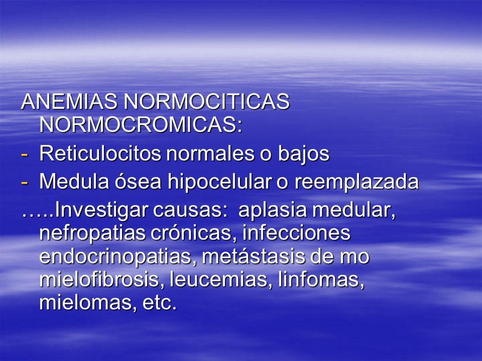 ANEMIAS NORMOCITICAS NORMOCROMICAS: