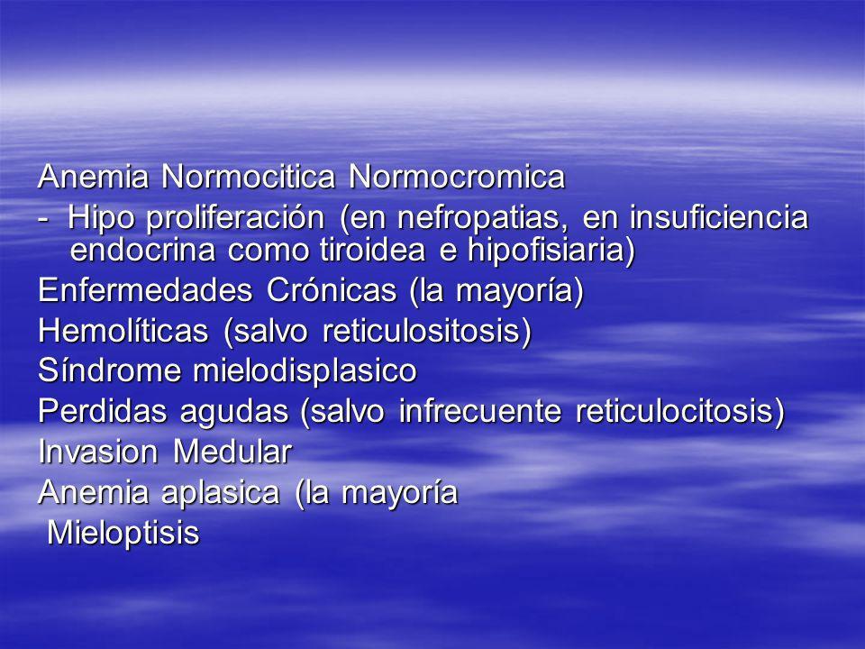 Anemia Normocitica Normocromica