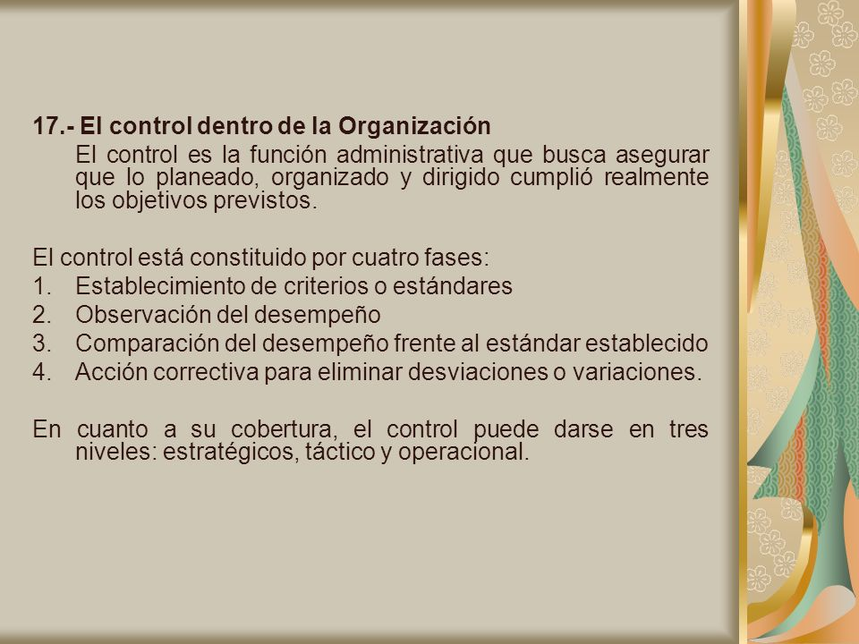 17.- El control dentro de la Organización