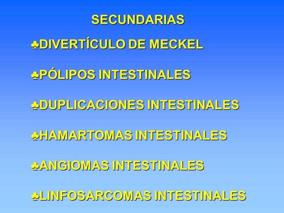 SECUNDARIAS DIVERTÍCULO DE MECKEL. PÓLIPOS INTESTINALES. DUPLICACIONES INTESTINALES. HAMARTOMAS INTESTINALES.