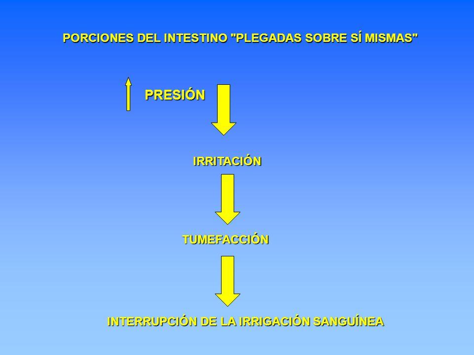 PRESIÓN PORCIONES DEL INTESTINO PLEGADAS SOBRE SÍ MISMAS IRRITACIÓN