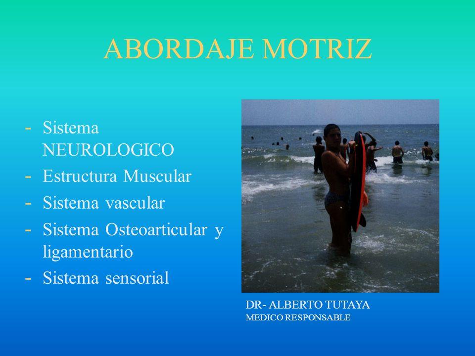 ABORDAJE MOTRIZ Sistema NEUROLOGICO Estructura Muscular