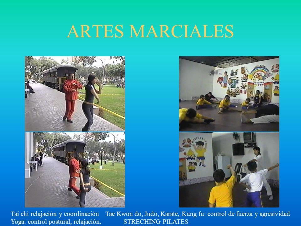 ARTES MARCIALES Tai chi relajación y coordinación Tae Kwon do, Judo, Karate, Kung fu: control de fuerza y agresividad.