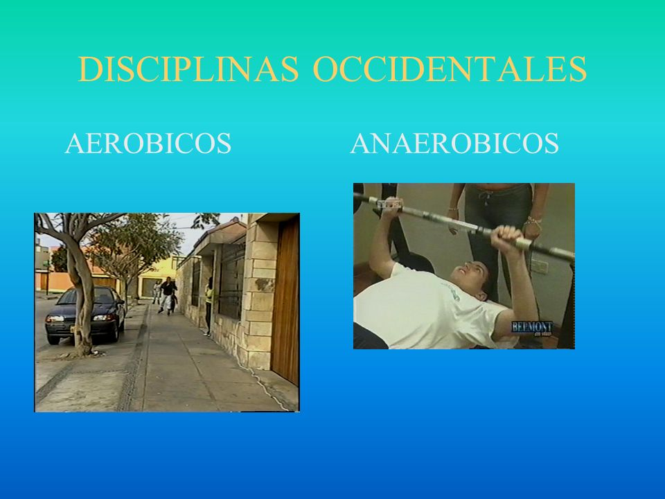 DISCIPLINAS OCCIDENTALES