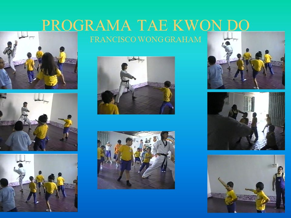 PROGRAMA TAE KWON DO FRANCISCO WONG GRAHAM