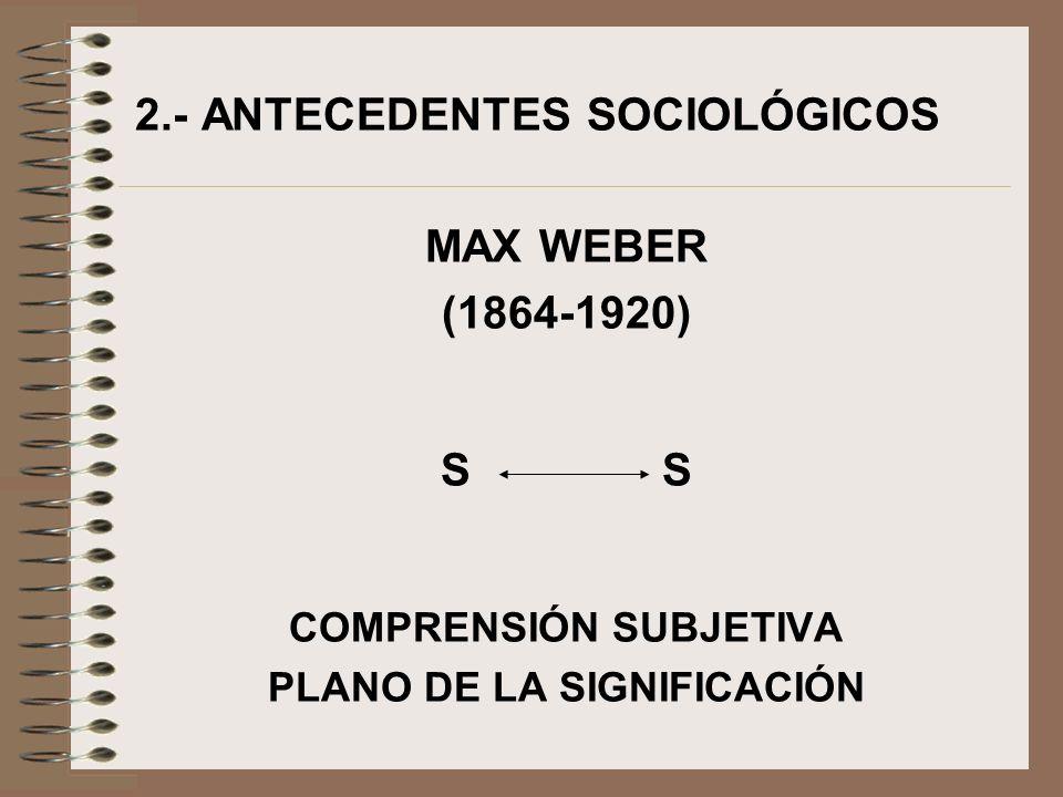 COMPRENSIÓN SUBJETIVA PLANO DE LA SIGNIFICACIÓN