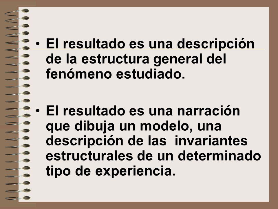 El resultado es una descripción de la estructura general del fenómeno estudiado.