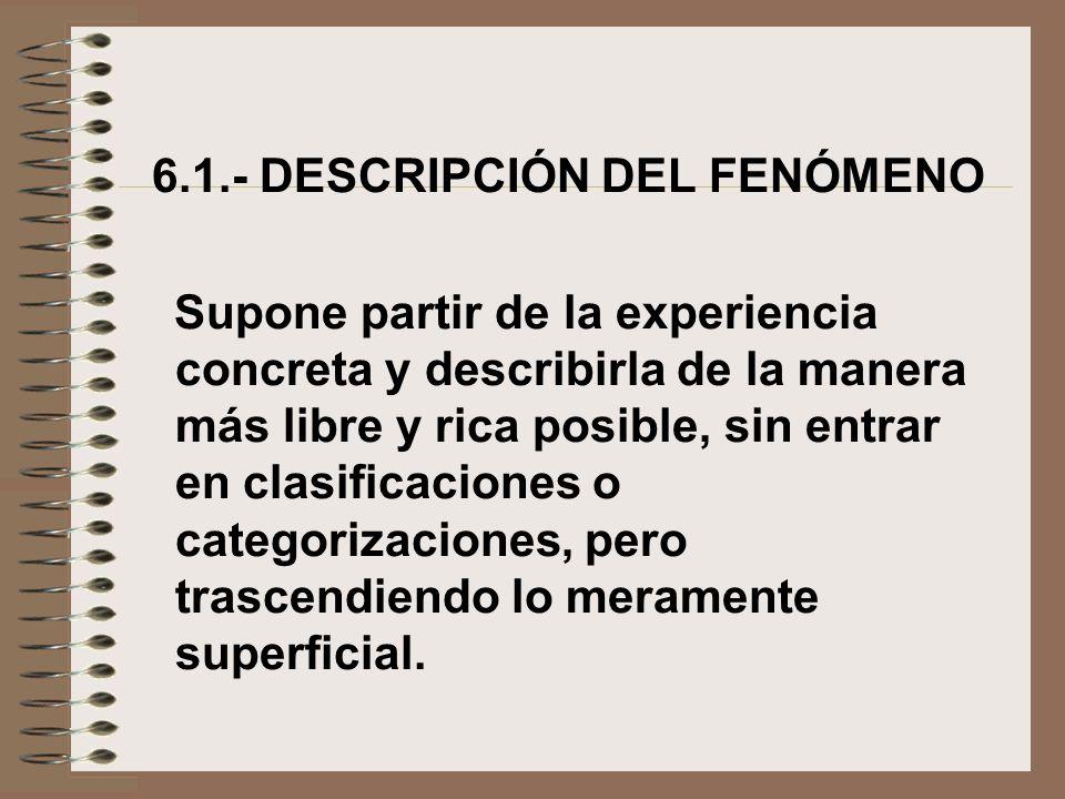 6.1.- DESCRIPCIÓN DEL FENÓMENO