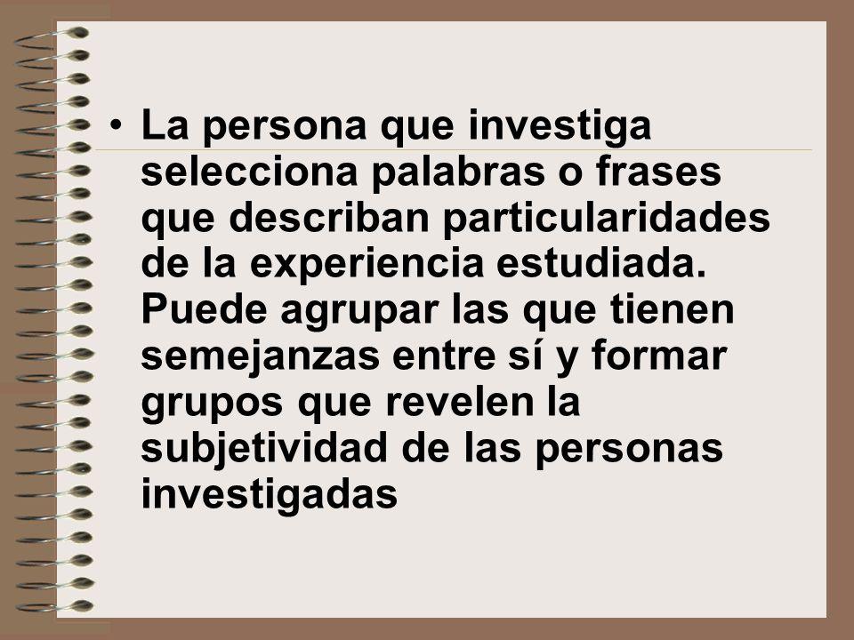 La persona que investiga selecciona palabras o frases que describan particularidades de la experiencia estudiada.