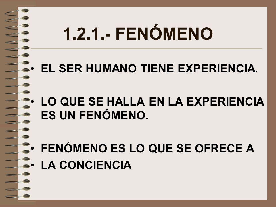 1.2.1.- FENÓMENO EL SER HUMANO TIENE EXPERIENCIA.