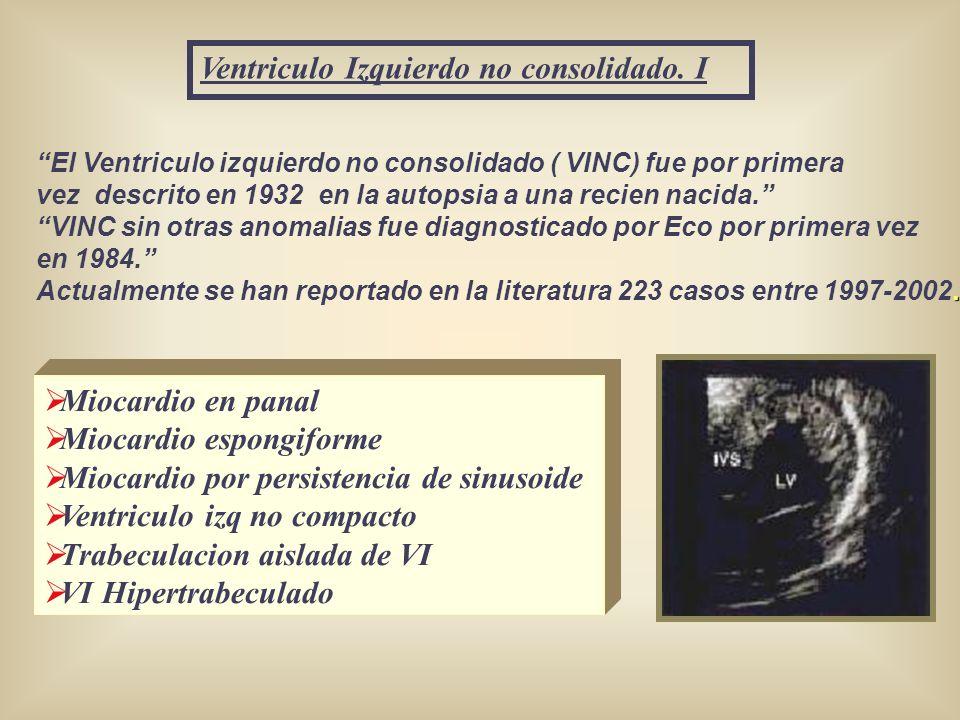 Ventriculo Izquierdo no consolidado. I