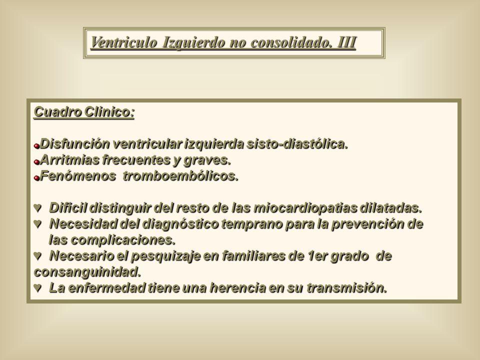 Ventriculo Izquierdo no consolidado. III