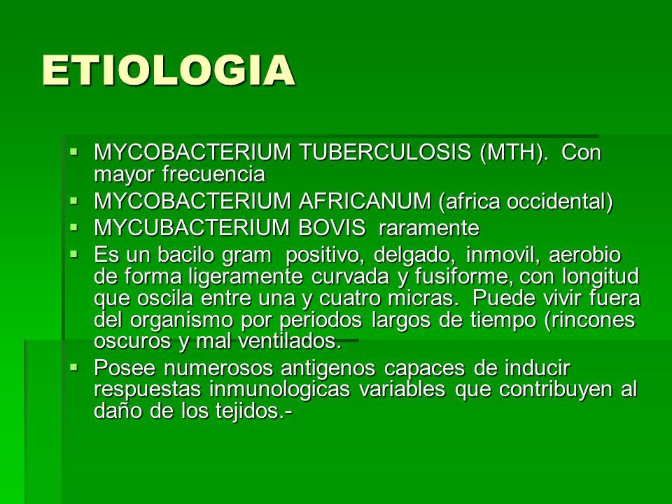 ETIOLOGIA MYCOBACTERIUM TUBERCULOSIS (MTH). Con mayor frecuencia