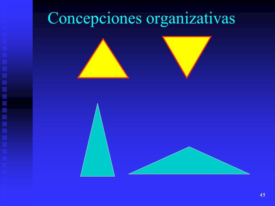 Concepciones organizativas