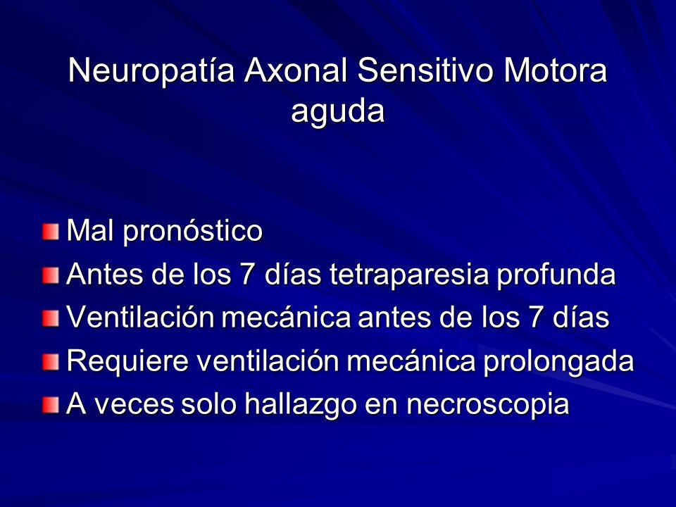 Neuropatía Axonal Sensitivo Motora aguda