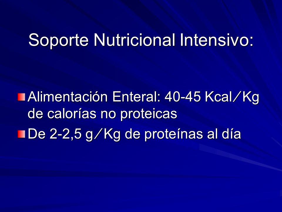 Soporte Nutricional Intensivo: