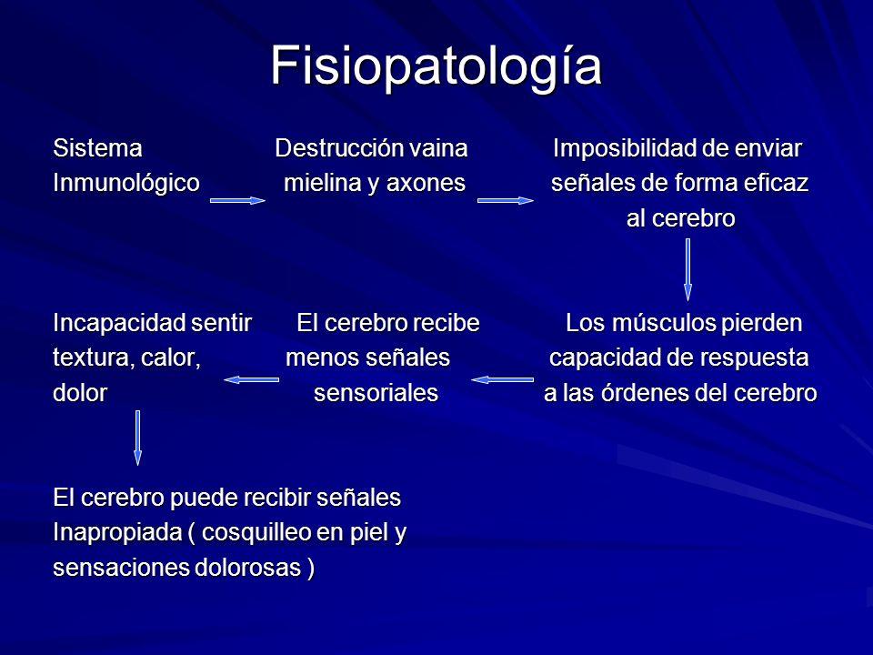 Fisiopatología Sistema Destrucción vaina Imposibilidad de enviar