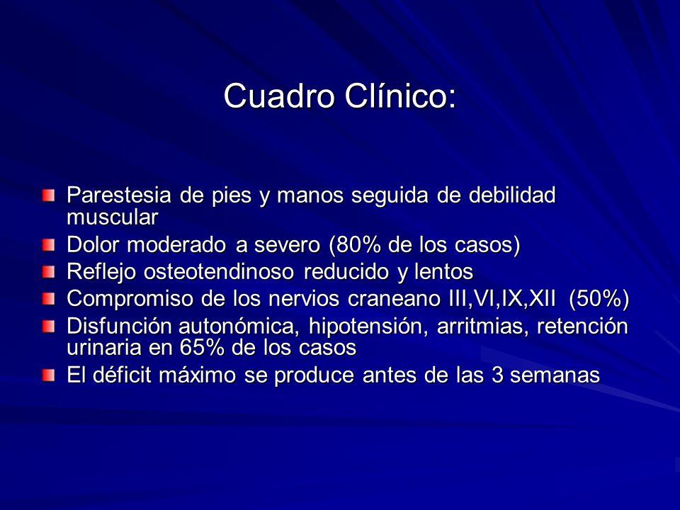 Cuadro Clínico:Parestesia de pies y manos seguida de debilidad muscular. Dolor moderado a severo (80% de los casos)