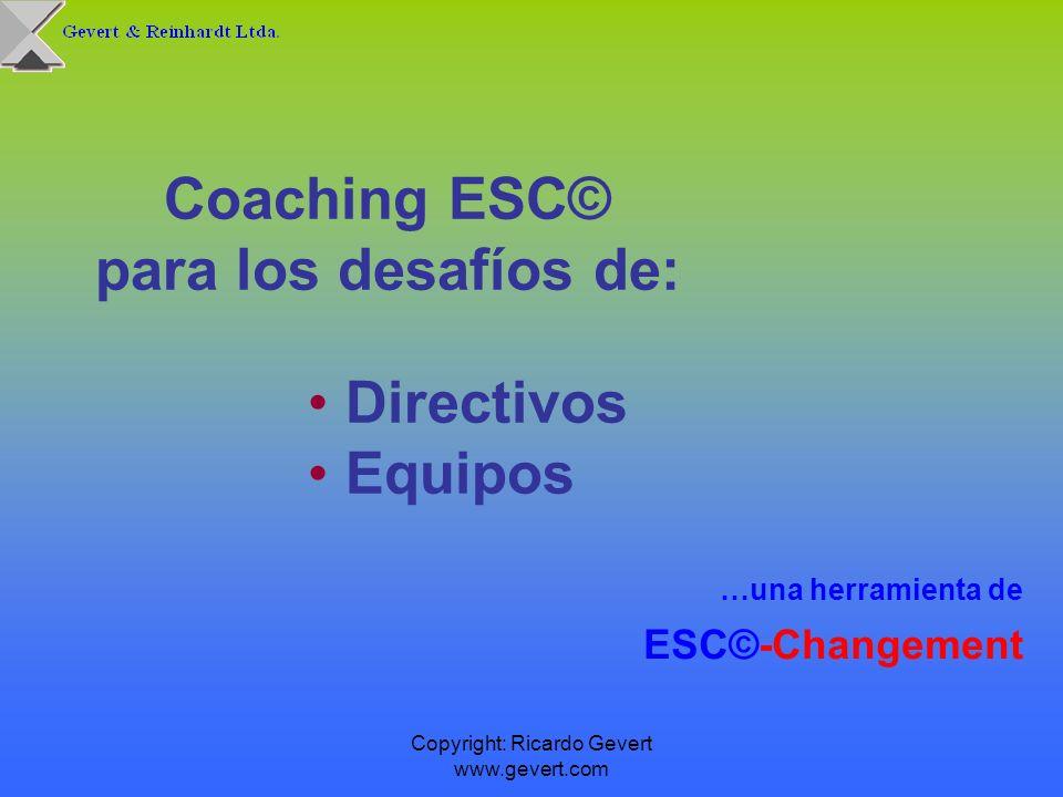 Coaching ESC© para los desafíos de:
