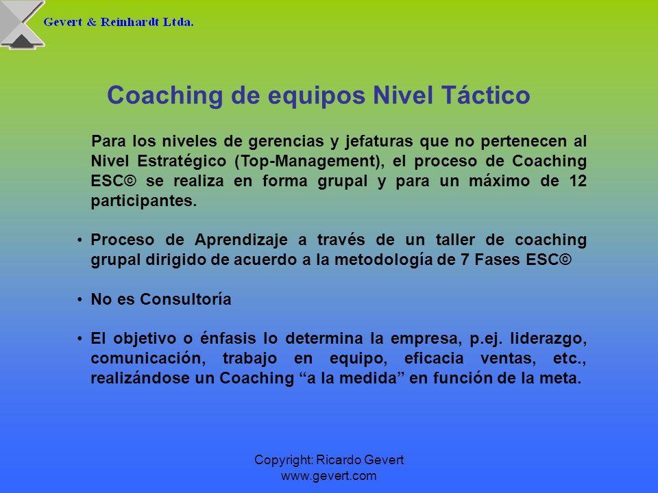 Coaching de equipos Nivel Táctico