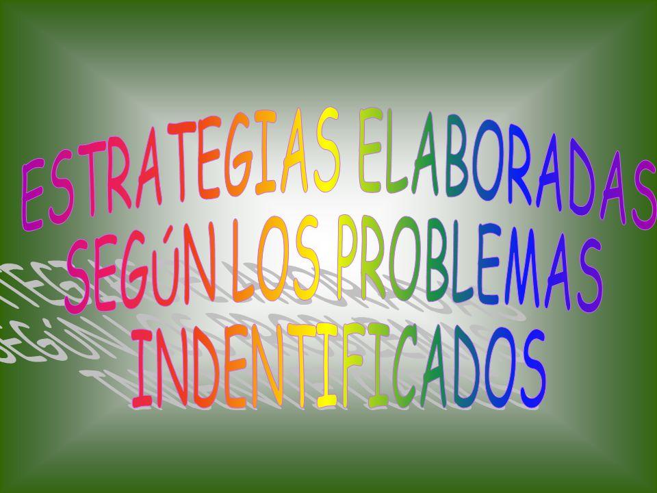 ESTRATEGIAS ELABORADAS