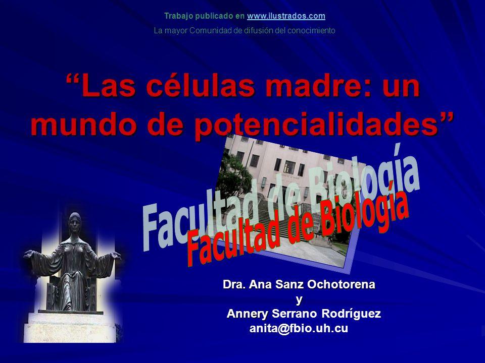 Las células madre: un mundo de potencialidades