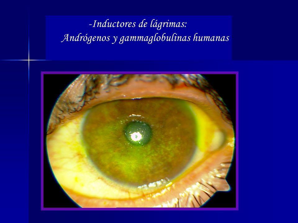 Inductores de lágrimas: Andrógenos y gammaglobulinas humanas