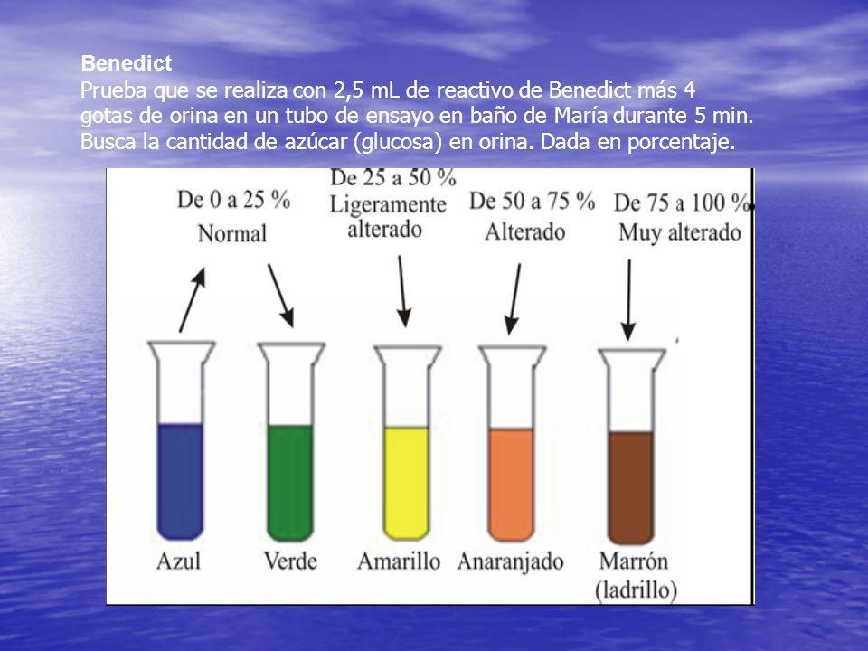 Benedict Prueba que se realiza con 2,5 mL de reactivo de Benedict más 4. gotas de orina en un tubo de ensayo en baño de María durante 5 min.