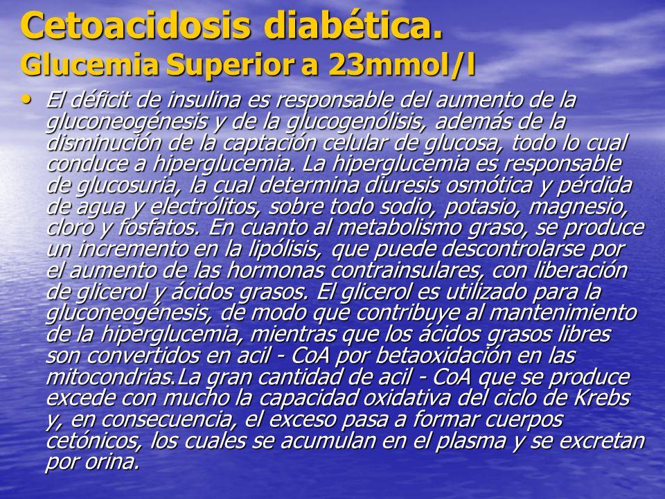 Cetoacidosis diabética. Glucemia Superior a 23mmol/l