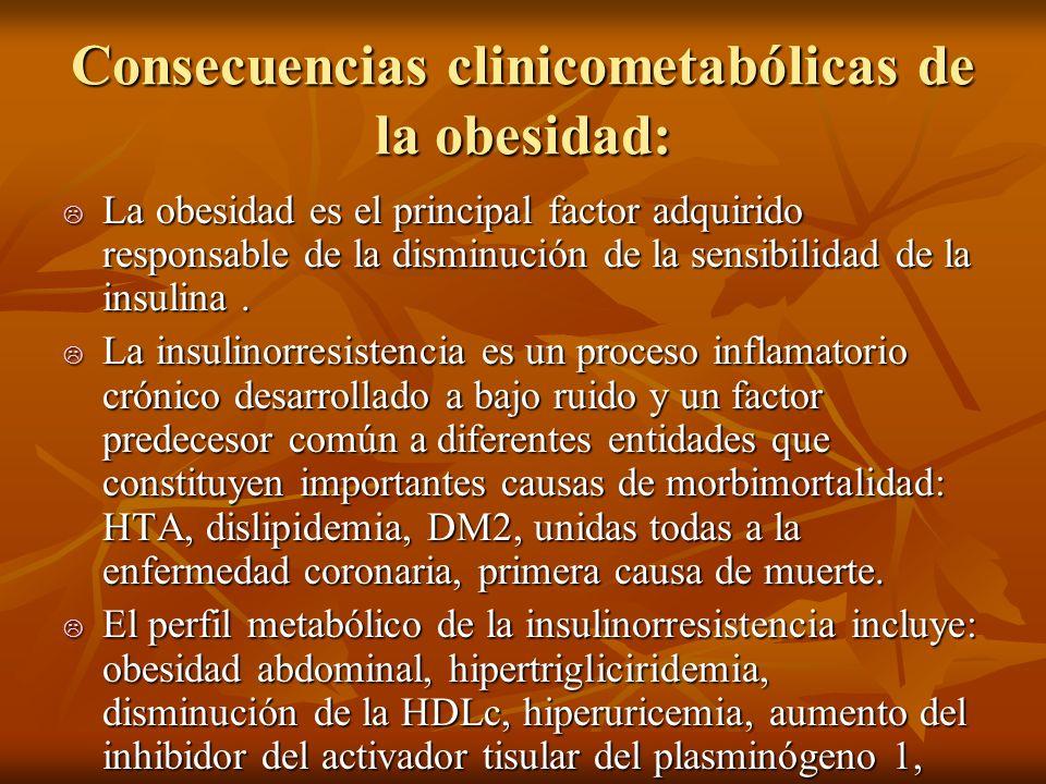 Consecuencias clinicometabólicas de la obesidad:
