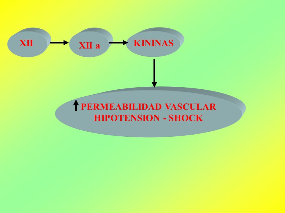 PERMEABILIDAD VASCULAR HIPOTENSION - SHOCK