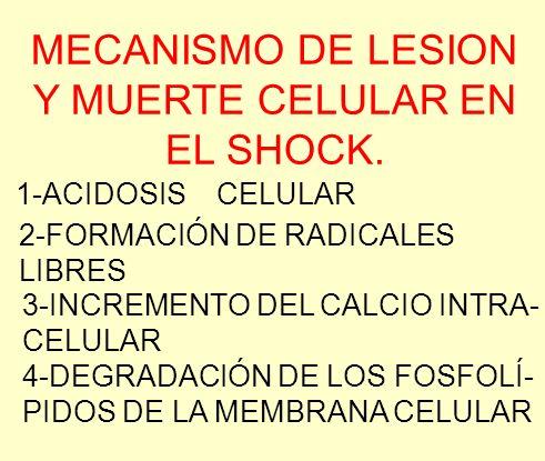 MECANISMO DE LESION Y MUERTE CELULAR EN EL SHOCK.