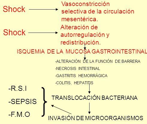 Shock Shock -R.S.I -SEPSIS -F.M.O Vasoconstricción