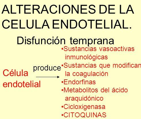 ALTERACIONES DE LA CELULA ENDOTELIAL.